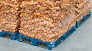 Martin Bros. food service pallet with onions